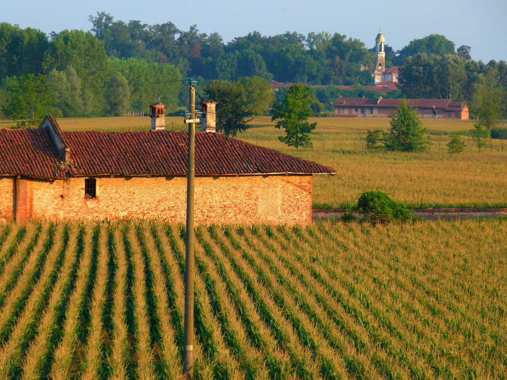 Agricoltura - Author: BORGHY52 / photo on flickr