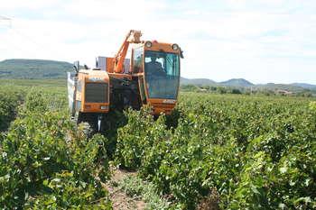 Agricoltura - photo credit: Fagairolles 34