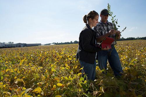 Giovani agricoltori - photo credit: United Soybean Board