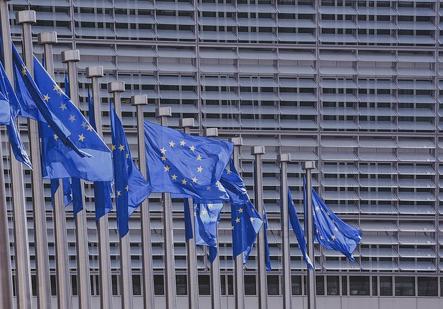 Cooperazione UE