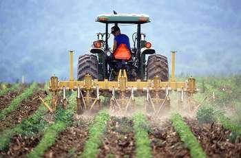 Agricoltura - Foto di PublicDomainImages da Pixabay