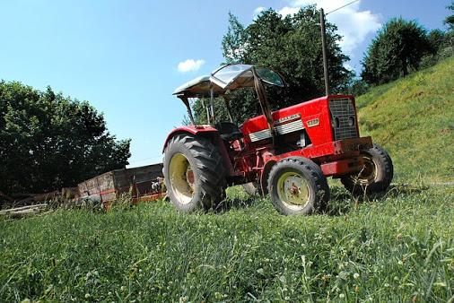 Agricoltura - Photo credit: Foto di tookapic da Pixabay