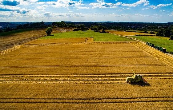 Green Deal e agricoltura, Italia in anticipo su paradigmi UE