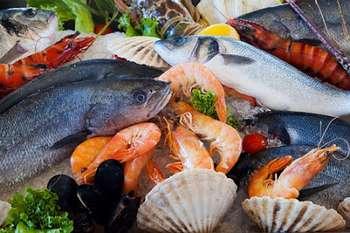 Coronavirus, sostegno al settore pesca: Photocredit: PublicDomainPictures da Pixabay