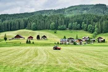 Agricoltura - Photo credit: Foto di Siggy Nowak da Pixabay