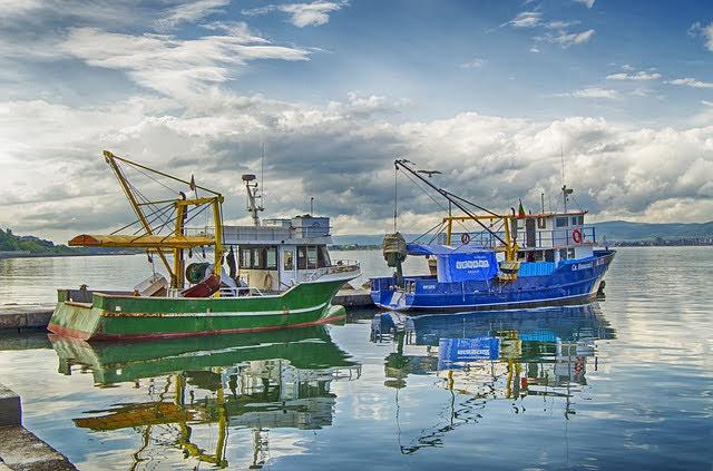 Pesca - Photo credit: Foto di Jim Black da Pixabay