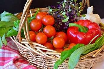 Agricoltura - Photo credit: Foto di RitaE da Pixabay
