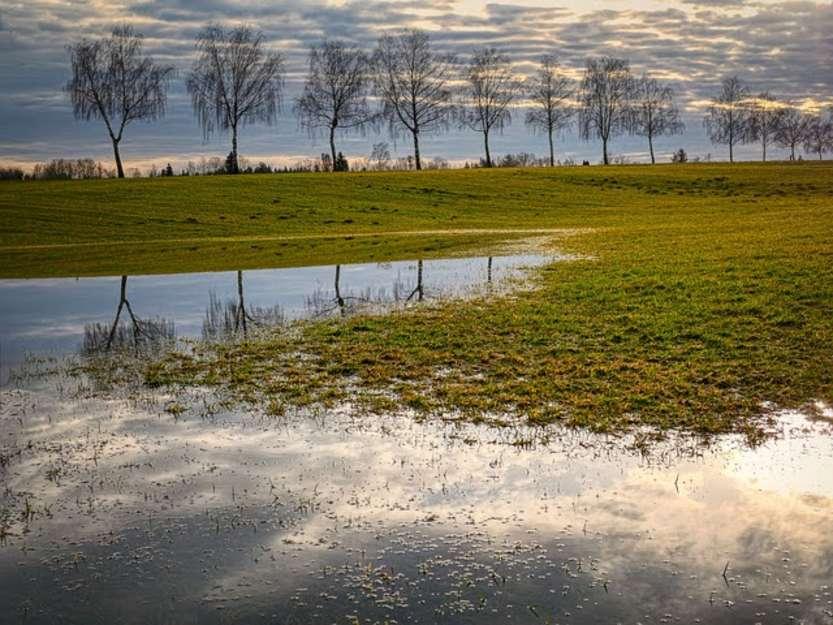 Gestione rischio in agricoltura - Photo credit: Foto di Albrecht Fietz da Pixabay