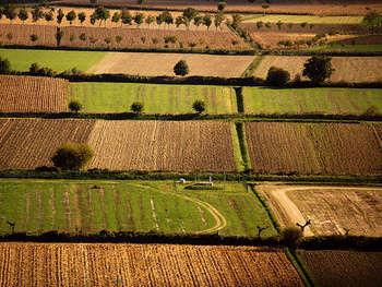 Agricoltura - foto di Hop-Frog